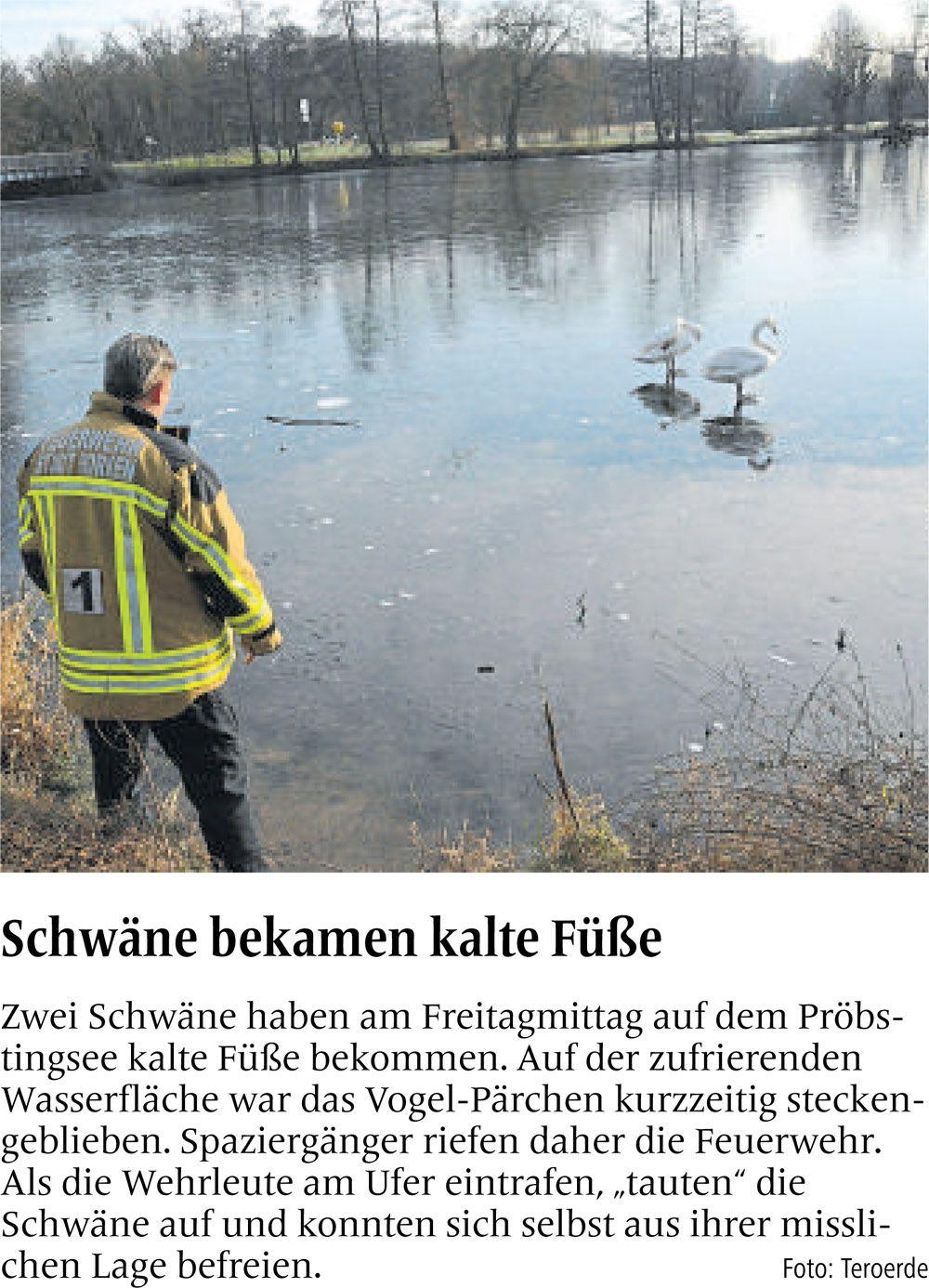 Zeitungsartikel aus der Borkener Zeitung vom 7. Januar 2017